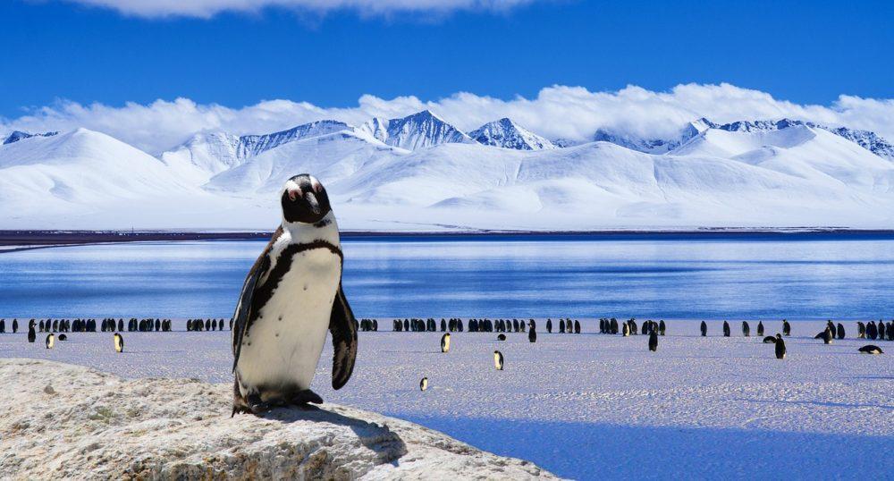 南極大陸ってどんなとこ?南極の過酷な気候と不思議な現象