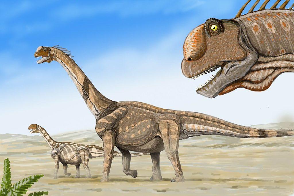 カマラサウル