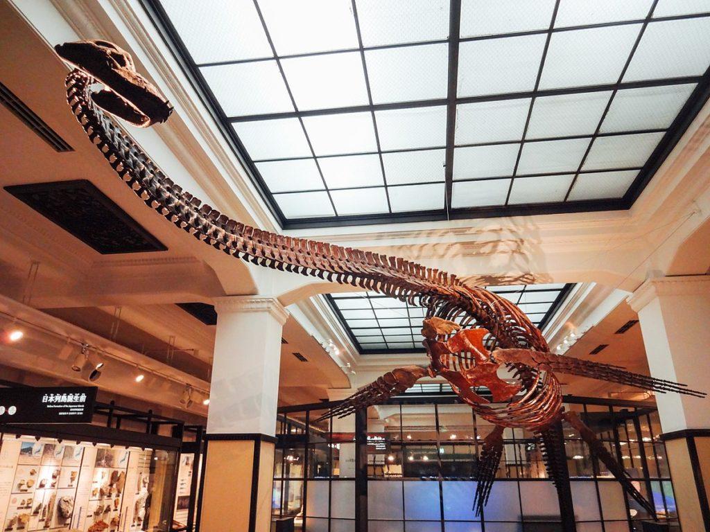 フタバサウルス