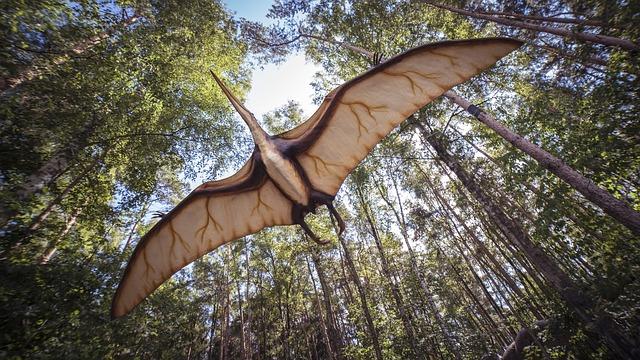 【翼竜とは】空飛ぶ恐竜?翼竜の種類と生態・最大サイズの謎!