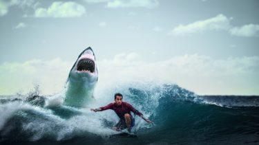 【歴代サメ映画】これはひどい!B級サメ映画がくだらなすぎて逆に面白い
